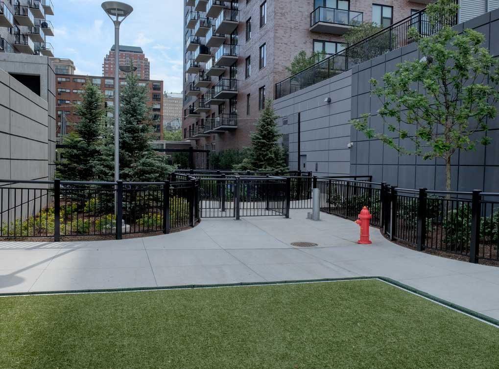 lofts-amenity-exterior-paw-park1